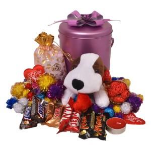 پک هدیه شکلات و عروسک کد H118