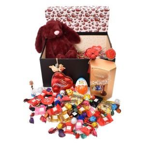 پک هدیه شکلات و عروسک سایز 1 کد H039