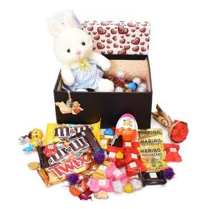 پک هدیه شکلات و عروسک سایز 5 کد H047