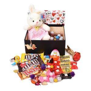 پک هدیه شکلات و عروسک سایز 5 کد H048