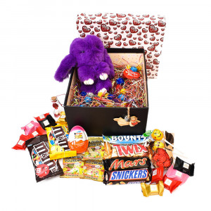 پک هدیه شکلات و عروسک سایز 4 کد H014