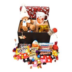 پک هدیه شکلات و عروسک سایز 2 کدH032