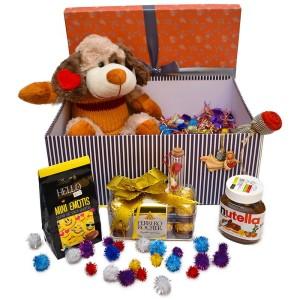 پک هدیه شکلات و عروسک سایز 1 کد H057