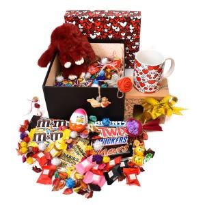 پک هدیه شکلات و عروسک سایز 3 کد H024