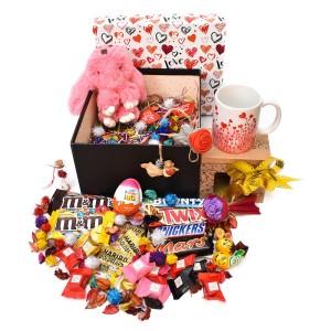 پک هدیه شکلات و عروسک سایز 3 کد H025