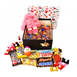 پک هدیه شکلات و عروسک سایز 3 کد H013